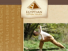 https://www.egyptiancottontshirts.com website