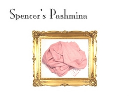 https://www.spencerspashmina.com/ website
