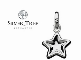 https://www.silvertreejewellery.co.uk/ website
