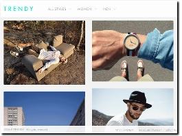 http://trendy.guru/en/styles website