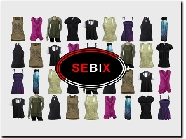 https://sebix.co.uk/ website