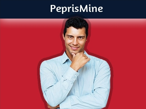 http://www.peprismine.com website