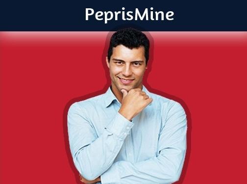 https://www.peprismine.com/ website