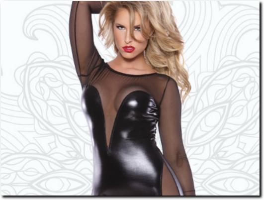 http://lingeriecuirvinyle.com website